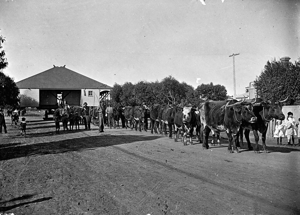 House Moving with Wagon and Cattle/Horses
