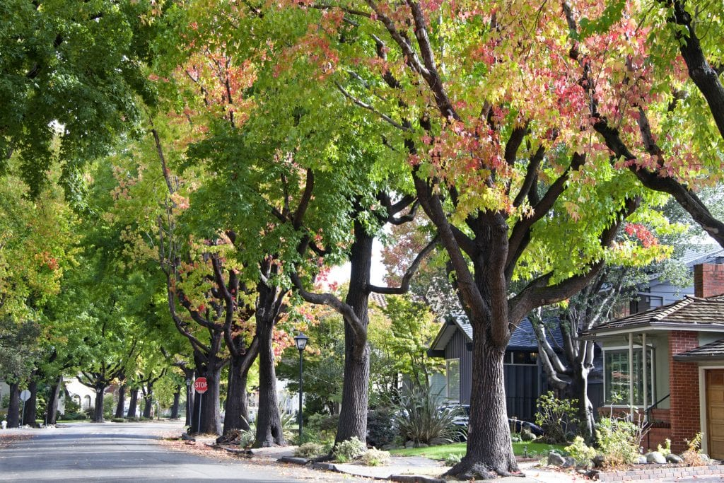 Roseville, CA Street View - ADU Mag