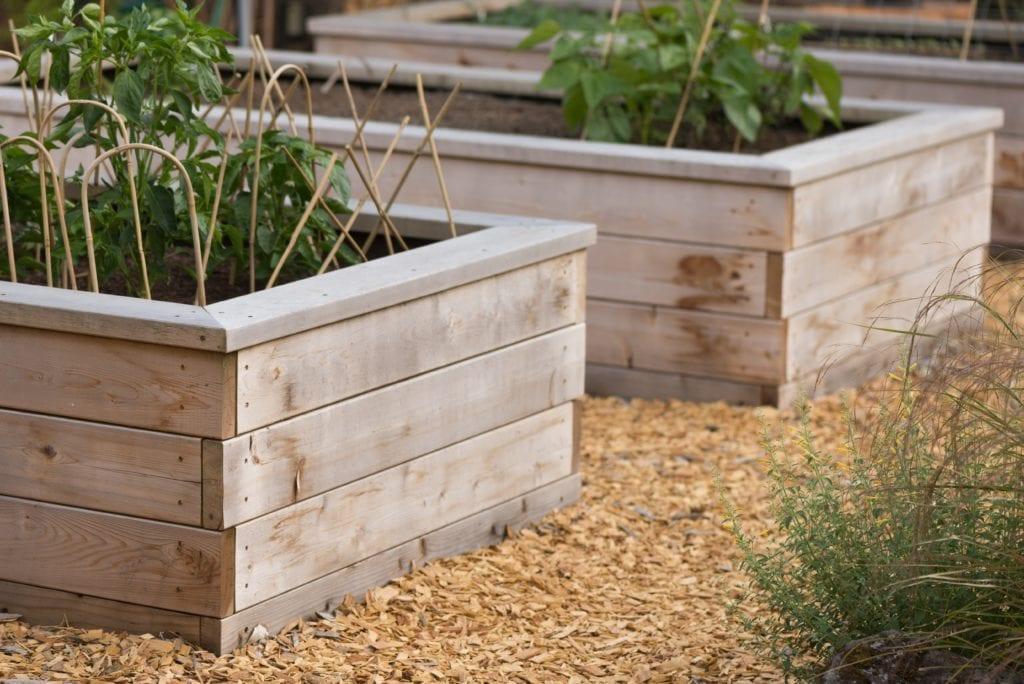 ADU Outdoor Urban Garden